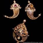 Tiger Claw Pendants Designs
