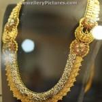 Lakshmi Kasu Mala Designs Price